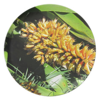 Tail Bromeliad Party Plate
