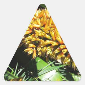 Tail Bromeliad Triangle Sticker