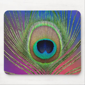 Tail feather of a peacock mouse pad