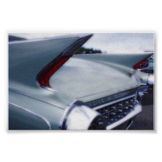 Tail Fins Poster