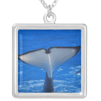 Tail of a Whale  Necklace