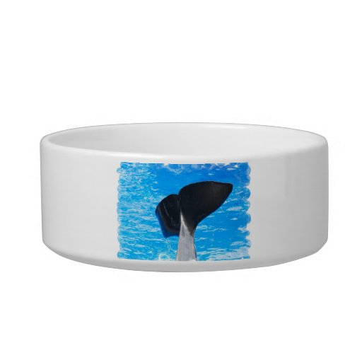 Tail of a Whale Pet Bowl Cat Food Bowls