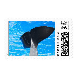 Tail of a Whale Postage Stamp