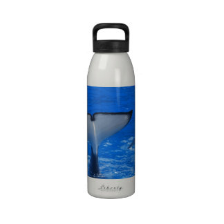 Tail of a Whale Water Bottle