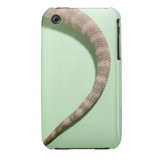 Tail of bearded dragon iPhone 3 cover