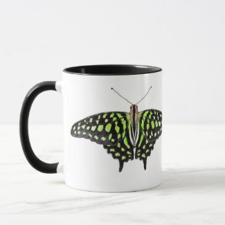 Tailed Green Jay Butterfly 2 Toned Mug