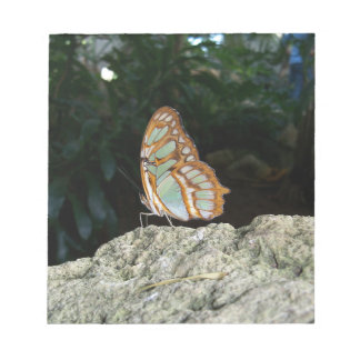 Tailed Jay Butterfly Notepad