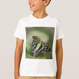 Tailed jay butterfly on leaf T-Shirt
