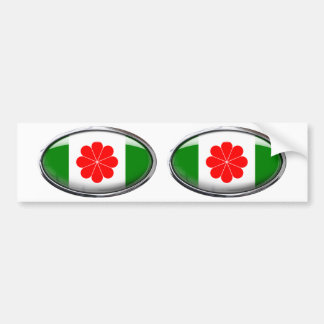 Taiwan Flag Glass Oval Bumper Sticker