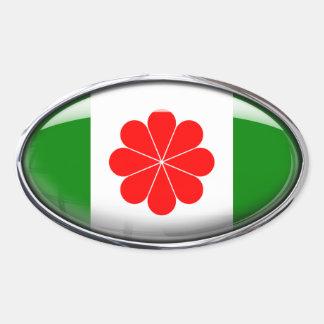 Taiwan Flag Glass Oval Oval Sticker