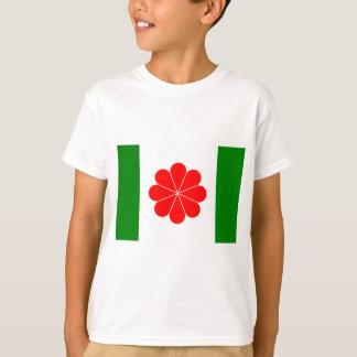 Taiwan Independence Flag (1996) T-Shirt