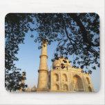 Taj Mahal  at sunrise. Agra, India 2008. Mouse Pad