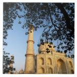 Taj Mahal  at sunrise. Agra, India 2008. Tiles
