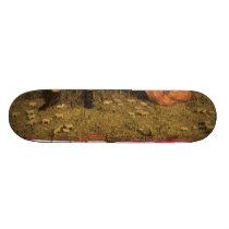 takashi yamauchi's skateboard 03102010