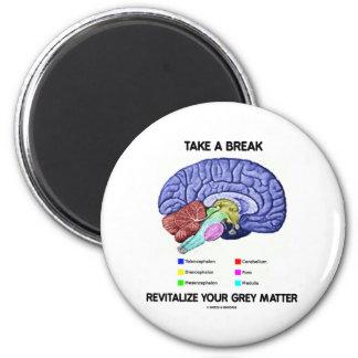 Take A Break Revitalize Your Grey Matter (Brain) Magnet