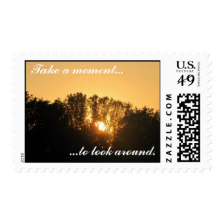 Take a moment...to look around. postage stamp