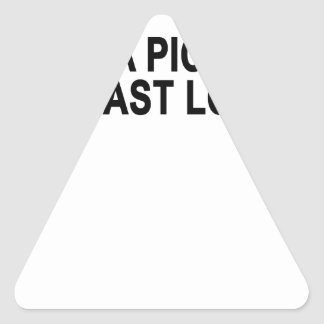 Take a picture! It'll last longer.png Triangle Sticker