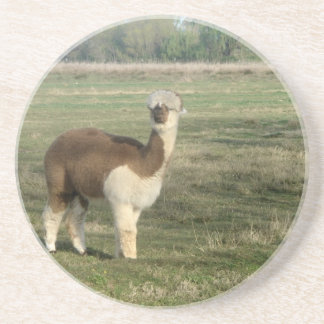 Take an alpaca to lunch coasters