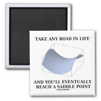 Take Any Road In Life Reach A Saddle Point Math Fridge Magnets