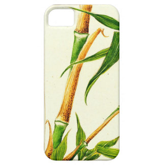 Take Bamboo 1870 iPhone SE/5/5s Case