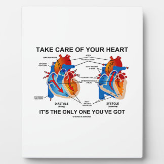 Take Care Of Your Heart It's Only One You've Got Plaque