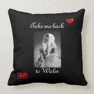 Take Me Back To Wales Pillow