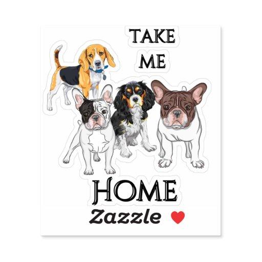 Take Me Home Dog Sticker