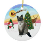 Take Off - Snow Shoe Cat Christmas Tree Ornaments