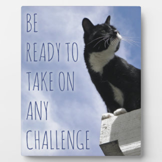 Take on any Challenge motivational cat Plaque