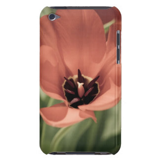 take on spring barely there iPod case