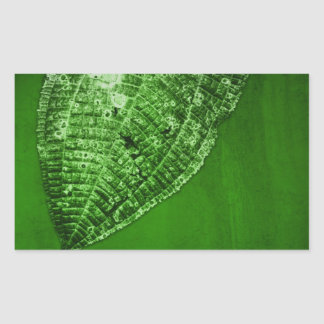 take out leaf rectangular sticker
