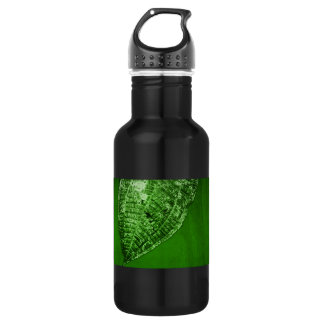 take out leaf water bottle