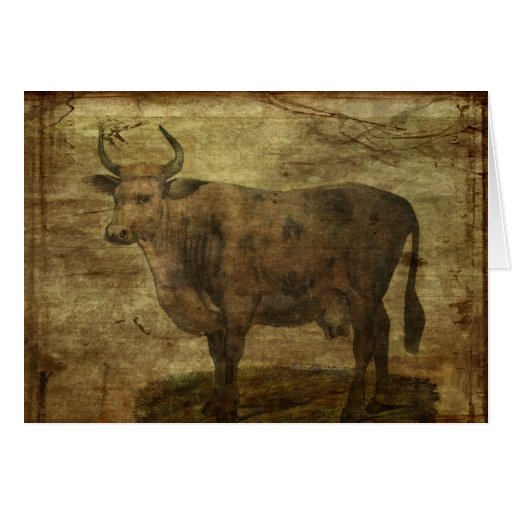 Take the Cow by the Horns Greeting Cards