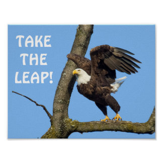 Take The Leap! Poster