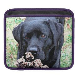 iPad Sleeve with Labrador Retriever Phone Cases design
