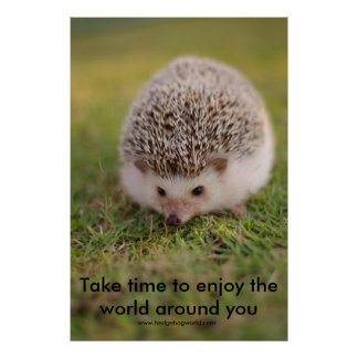 Take Time poster