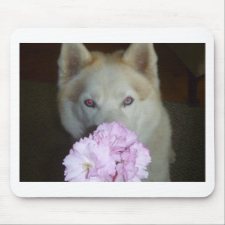 Take time to smell the flowers! mouse pad