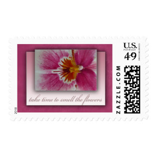 Take time to smell the flowers postage stamp