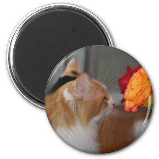 """""""Take Time to Smell the Roses"""" 2 Inch Round Magnet"""