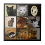 Take Your Cat to Work Day Ceramic Tiles