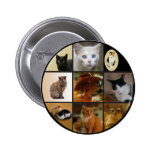 Take Your Cat to Work Day Pinback Button