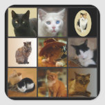 Take Your Cat to Work Day Square Sticker
