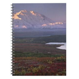 Taken in early September in Denali National Park Notebook