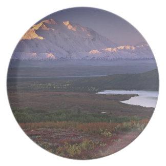 Taken in early September in Denali National Park Plate