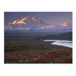 Taken in early September in Denali National Park Postcard
