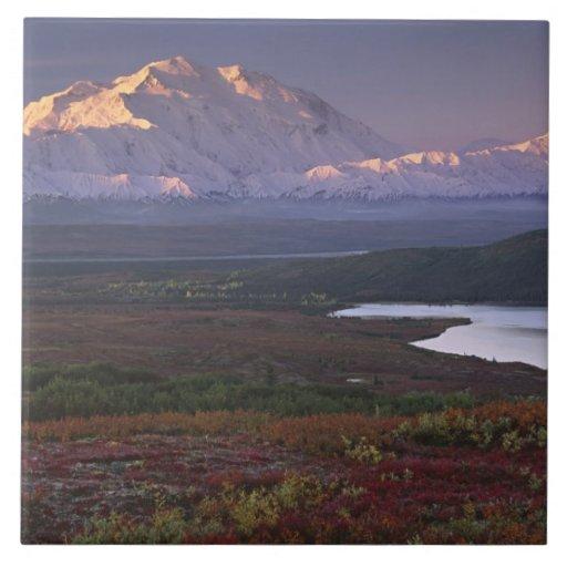 Taken in early September in Denali National Park Tile