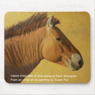 Takhi Stallion, Hustai National Park, Mongolia Mouse Pad
