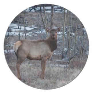Takhini Elk Melamine Plate