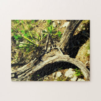 Taking A Hike In Bandera Puzzle