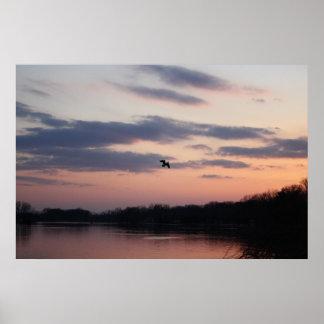 Taking flight print